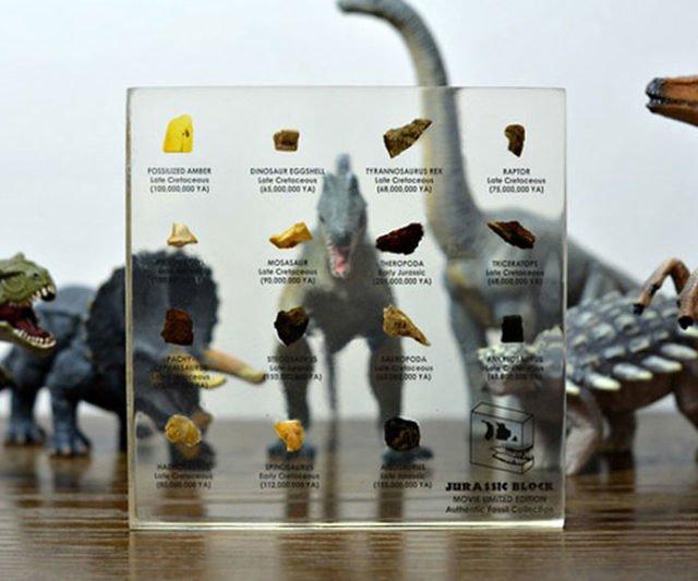 regali-per-ragazzi Collezione di fossili di dinosauro del Giurassico