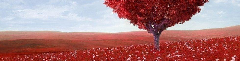 La grande guida ai regali di San Valentino per Lei