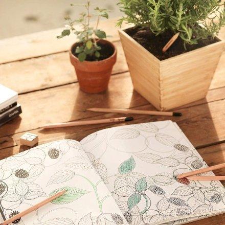 casa-ufficio Sprout La matita Ecologica