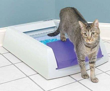 E' la Lettiera autopulente della ScoopFree. I rifiuti vengono spazzati via automaticamente con un rastrello in un vano chiuso 20 minuti dopo il passaggio del gatto.