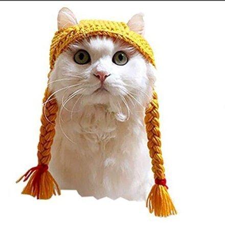 Il vostro gatto ha sempre sognato essere Pippi calzelunghe? La vostra Siamese sarebbe sempre voluta essere Tirolese? I sogni del tuo animale diventano realtà: ecco a voi le treccine bionde per gatto!
